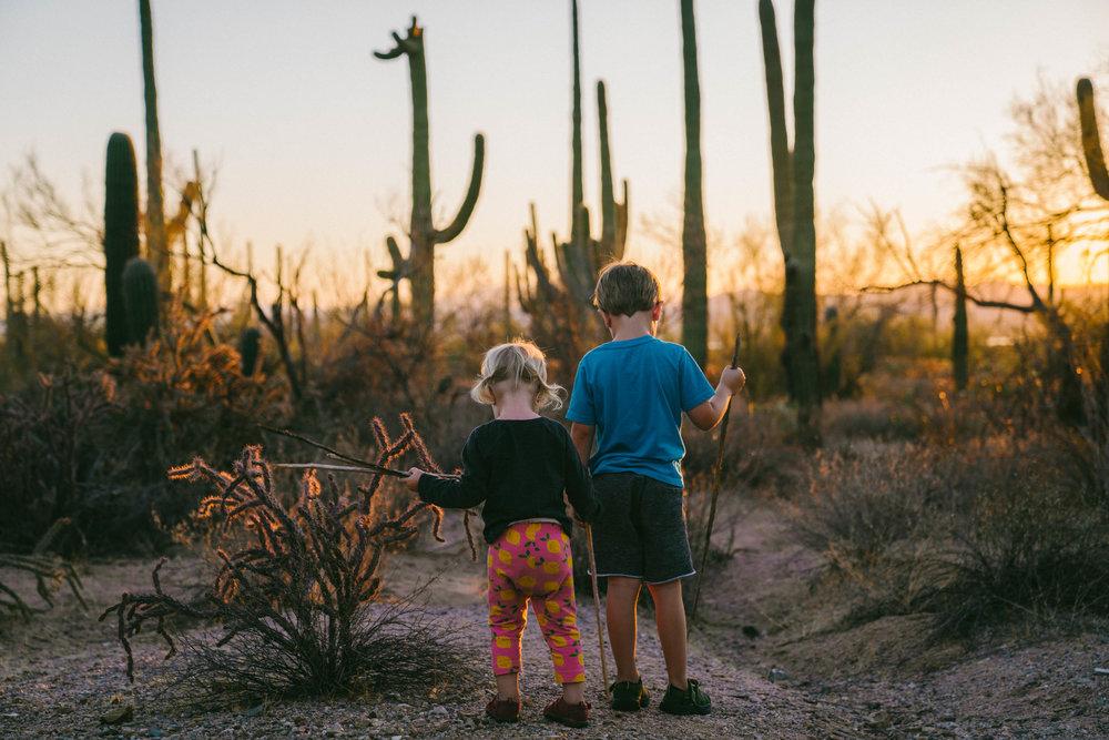saguaro-95.jpg