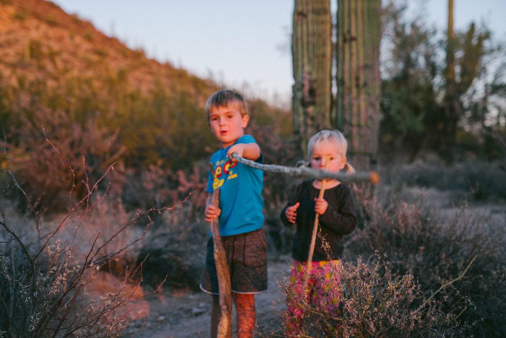 saguaro-106.jpg