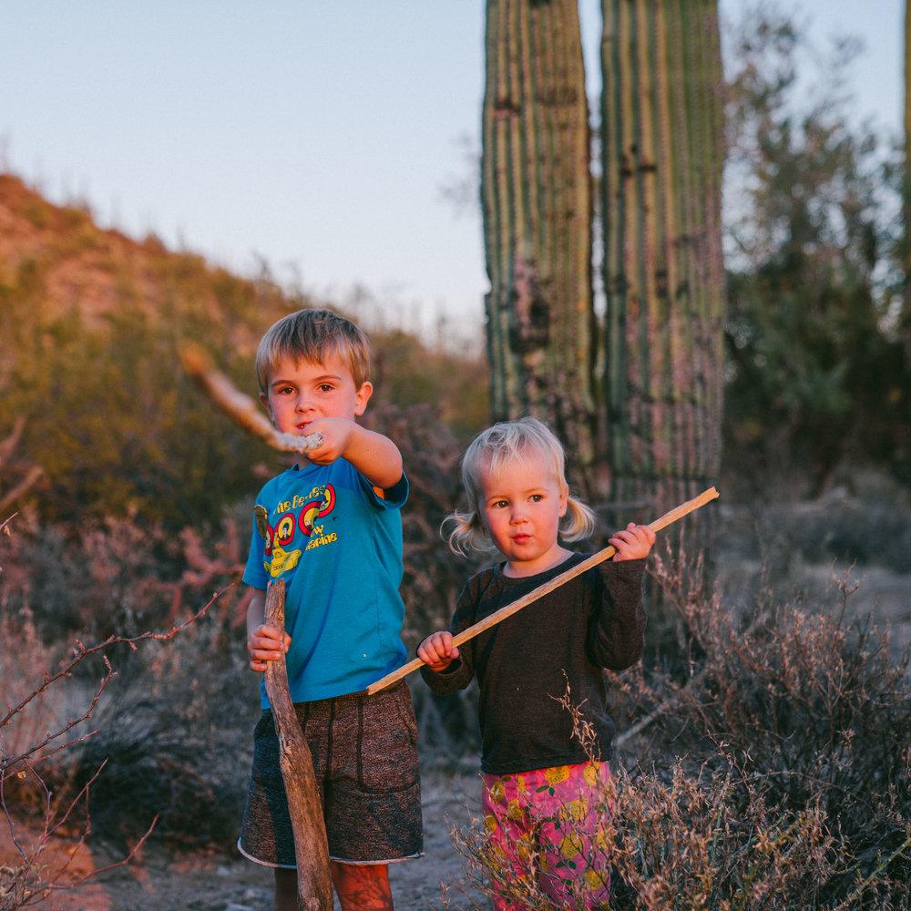 saguaro-107.jpg