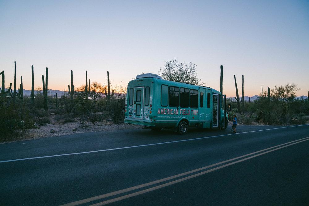 saguaro-114.jpg