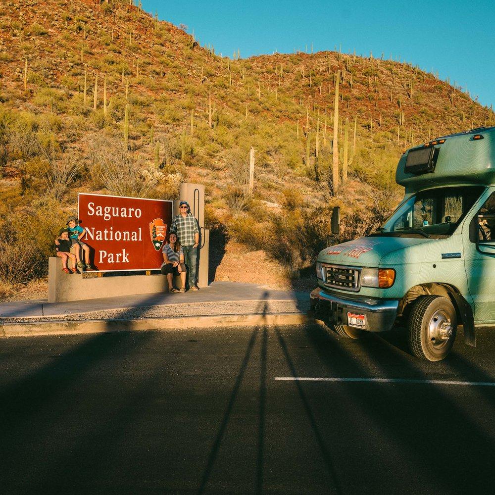 saguaro-85.jpg