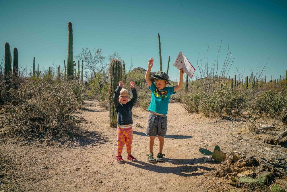 saguaro-37.jpg