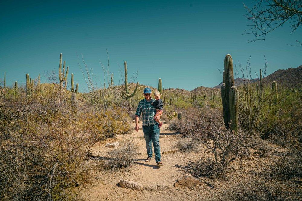 saguaro-42.jpg