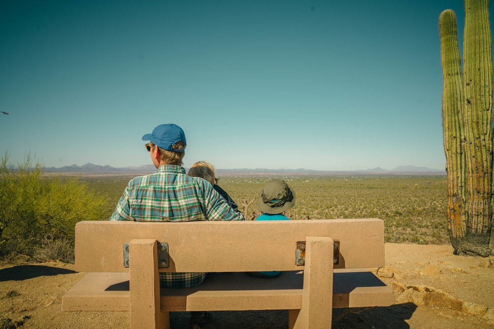 saguaro-44.jpg
