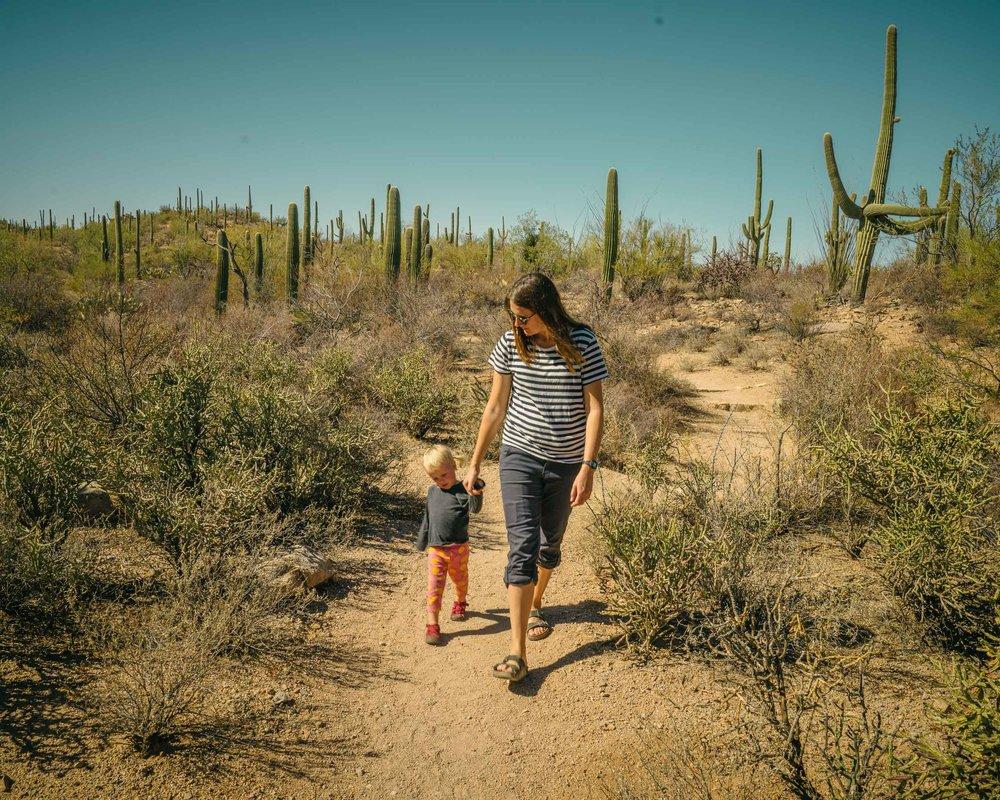 saguaro-47.jpg