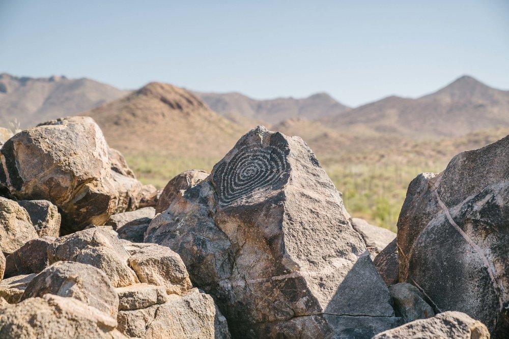 saguaro-54.jpg