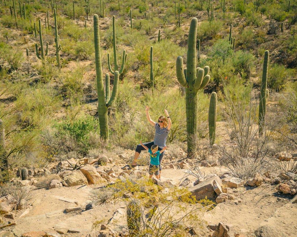 saguaro-58.jpg