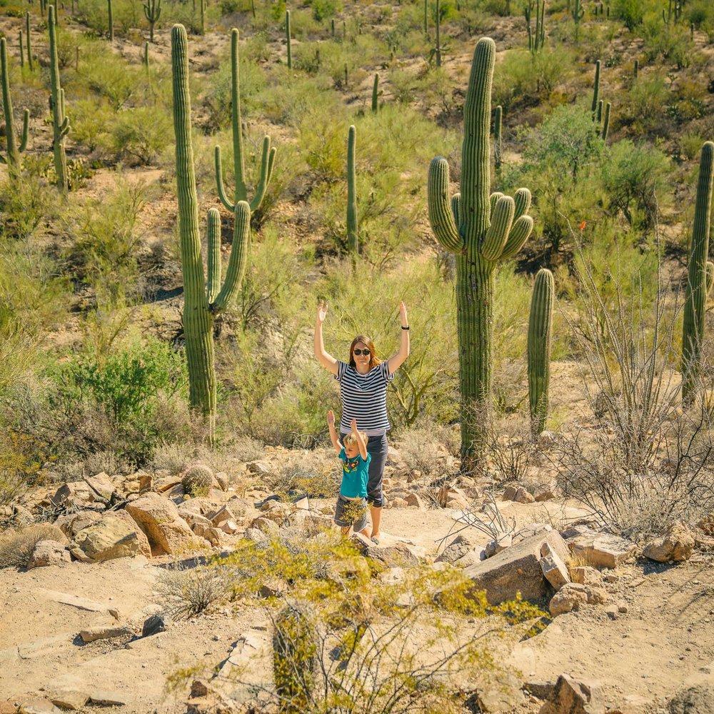 saguaro-59.jpg