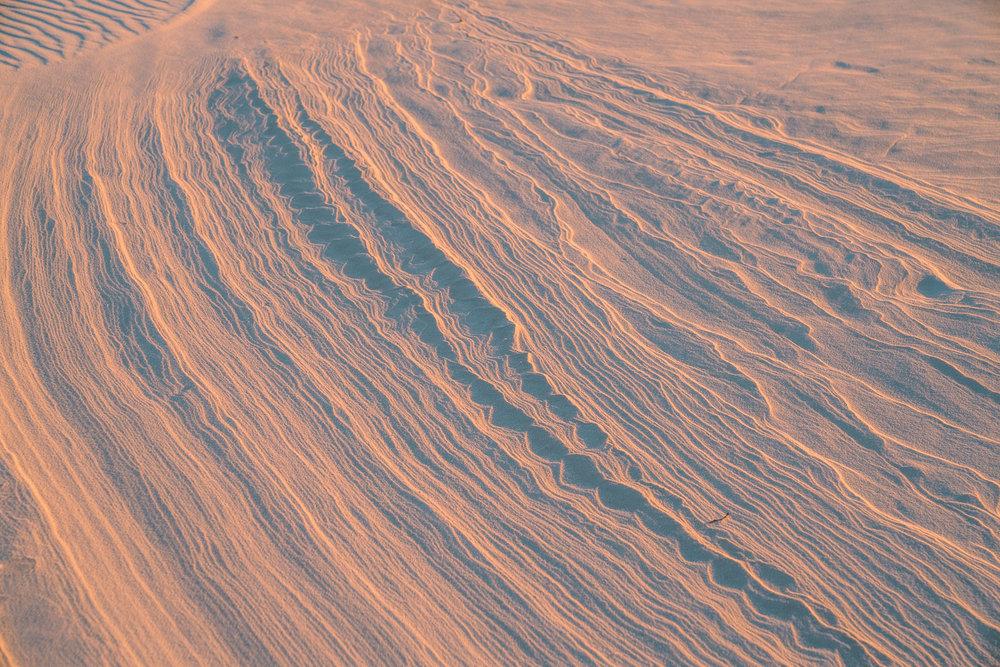 white-sands-44.jpg