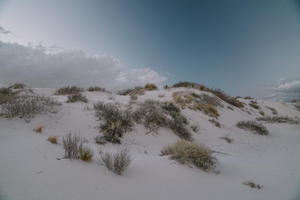 white-sands-77.jpg