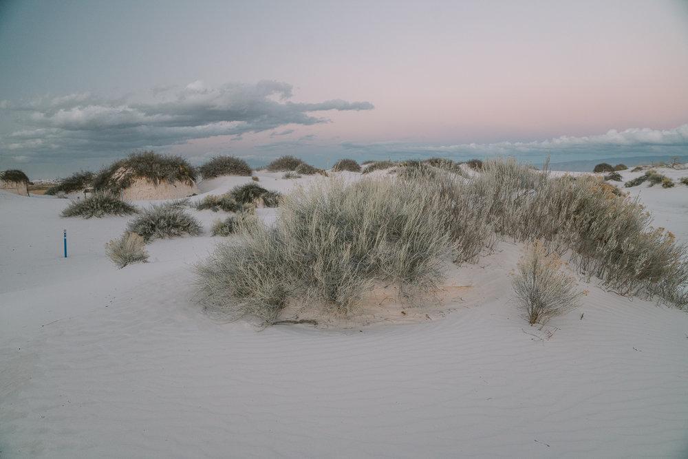 white-sands-78.jpg