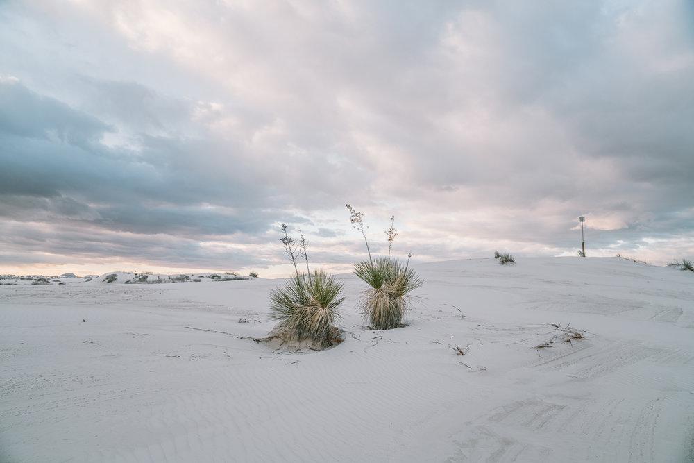 white-sands-98.jpg