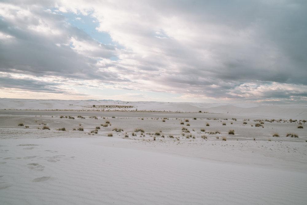 white-sands-123.jpg