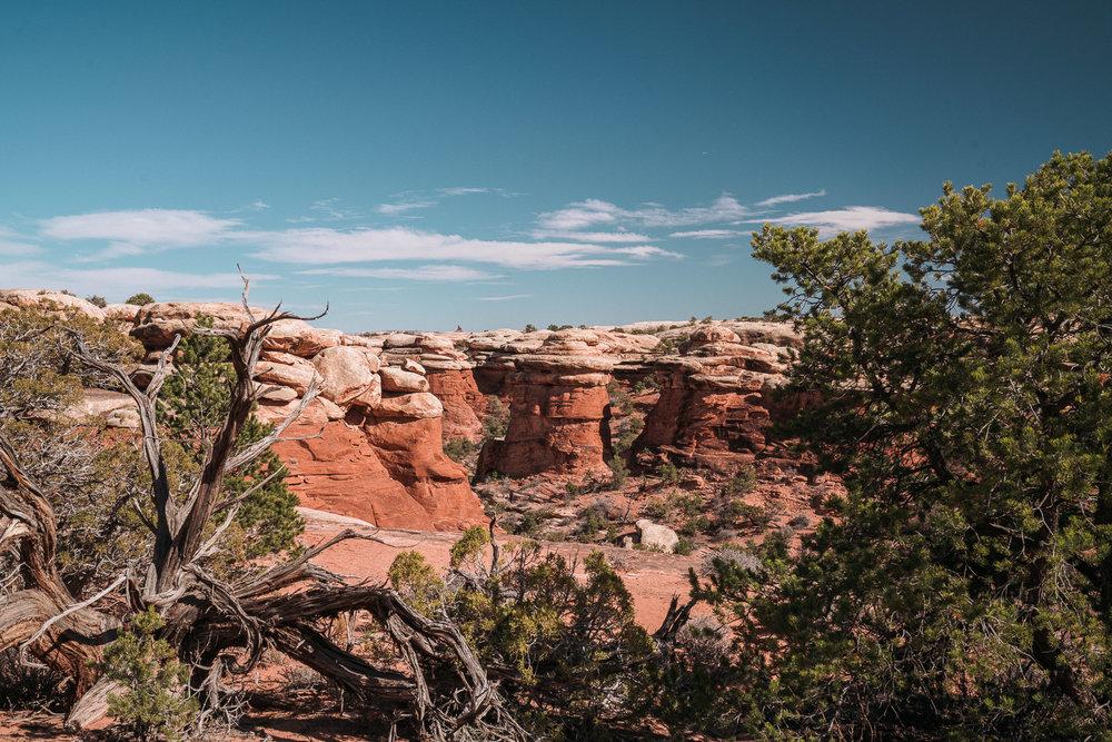 canyonlands-7.jpg
