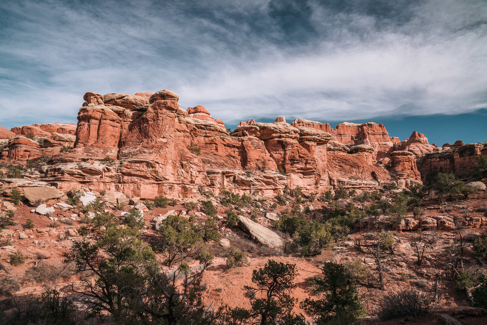 canyonlands-42.jpg