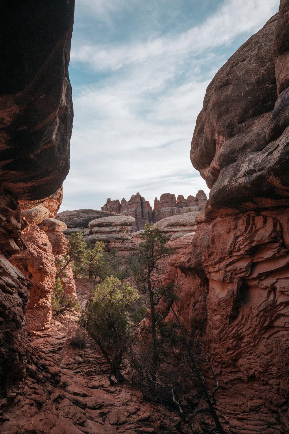 canyonlands-82.jpg