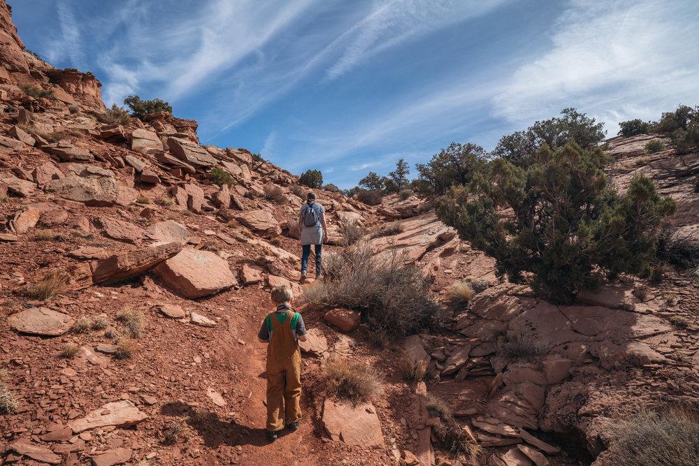 canyonlands-211.jpg