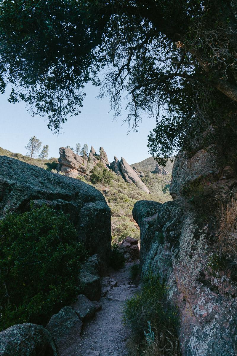 pinnacles-24.jpg
