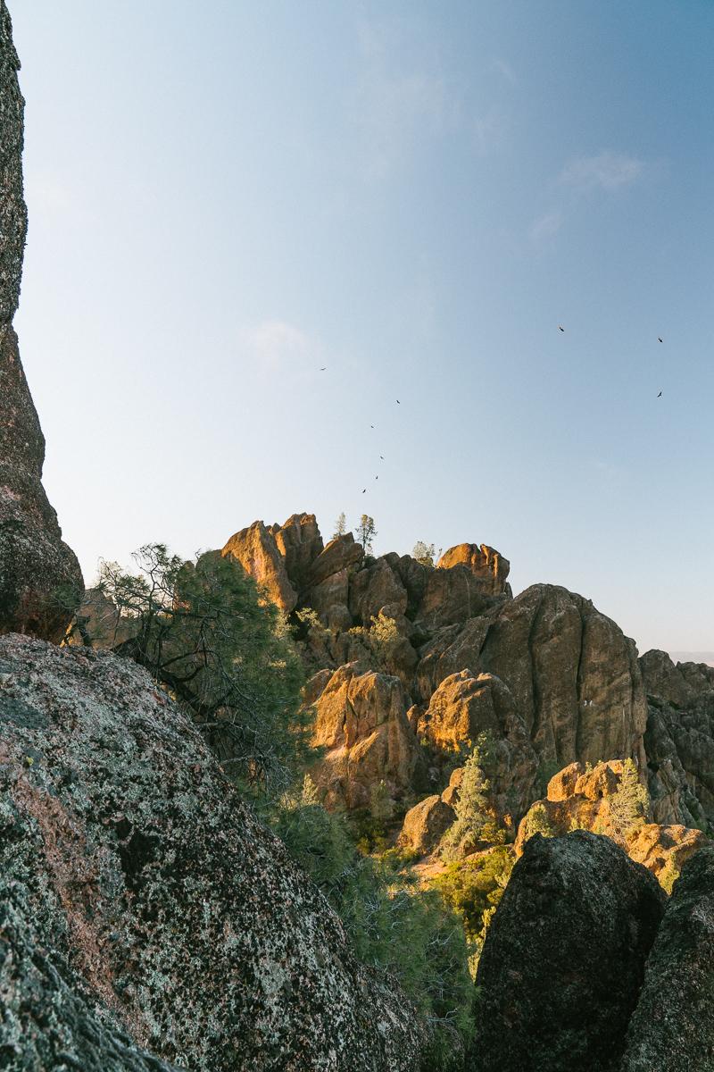 pinnacles-56.jpg