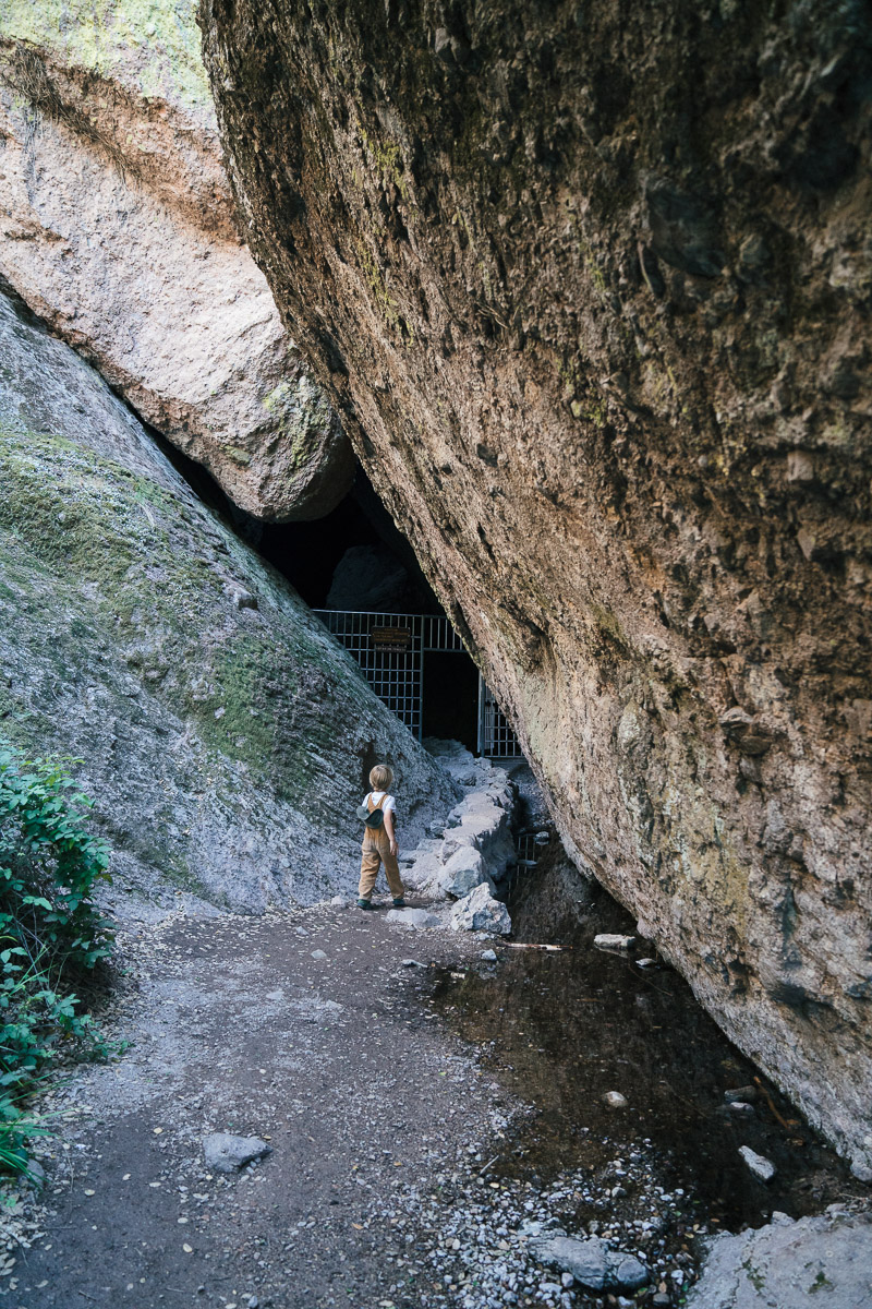 pinnacles-88.jpg