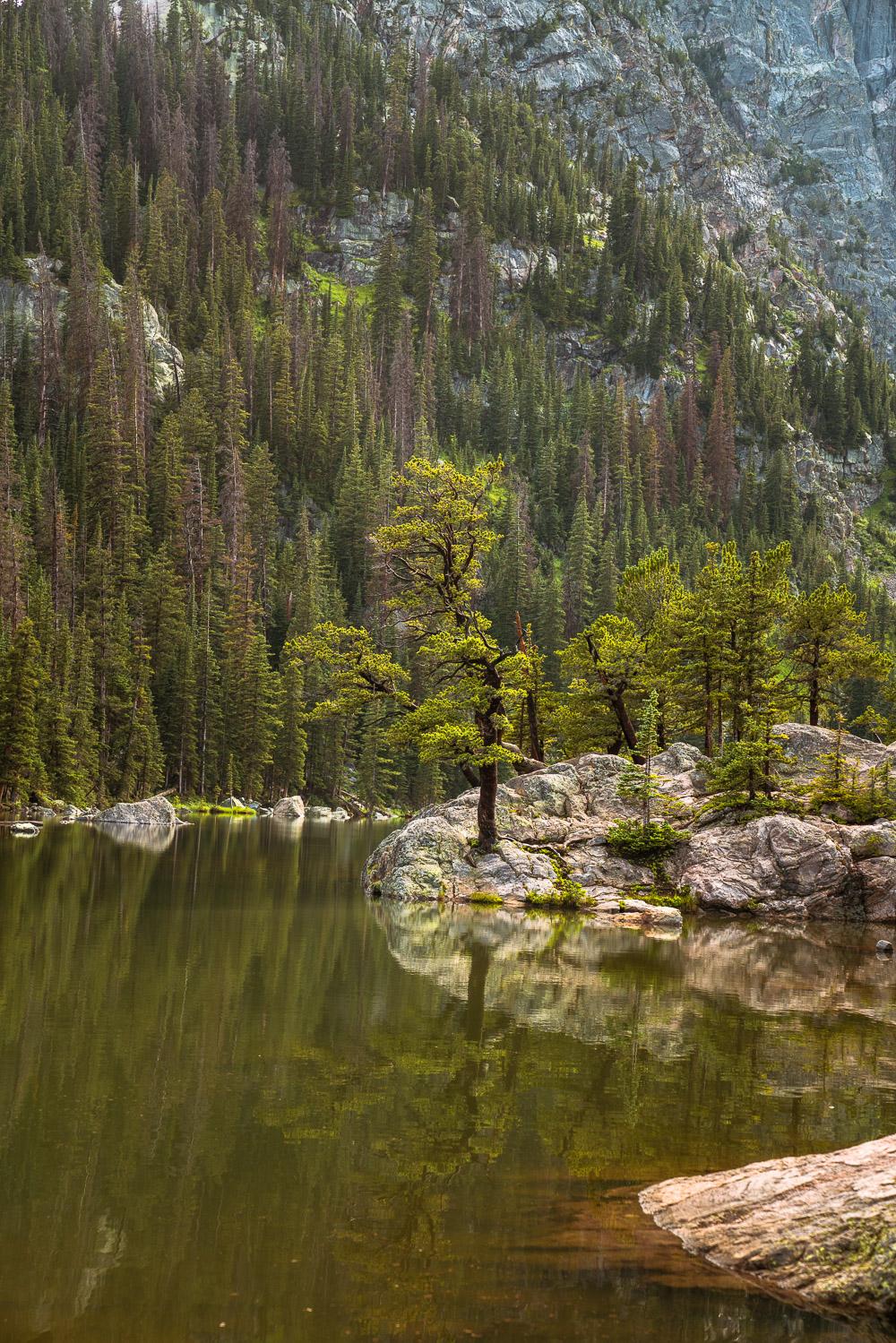 rocky-mountain-62.jpg