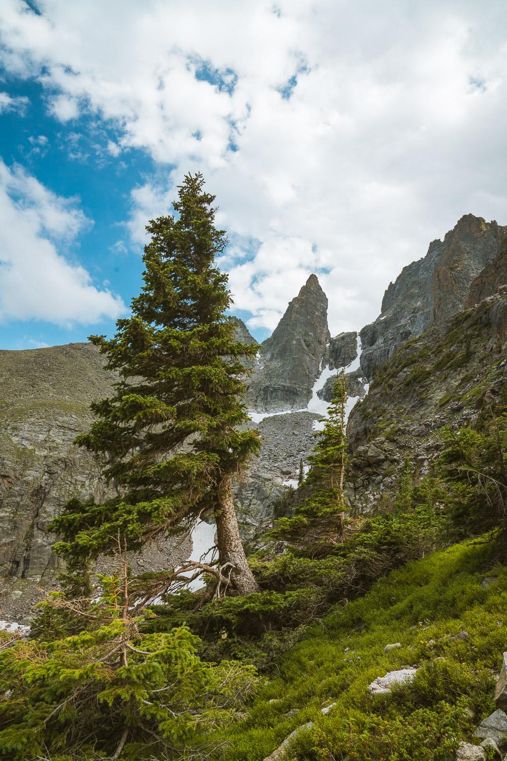 rocky-mountain-120.jpg