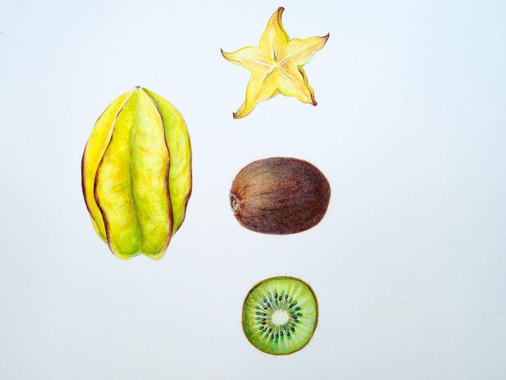starfruit-kiwi_fullSize.jpg