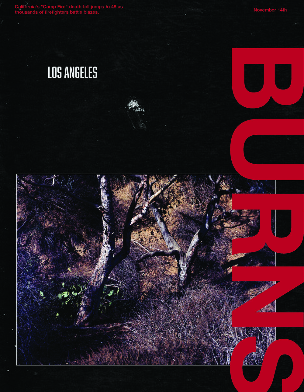 BOOK-COVER-IDEA-TEXT.jpg