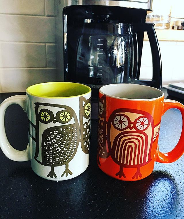 Nothing like a cup of coffee between old friends. ☕️#hoothoot #chiomegas #lovethemugs #makenewfriends #keeptheold #morningjoe #coffeetalk #makingmemories