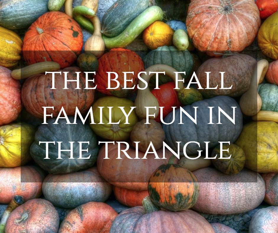fall family fun post.jpg