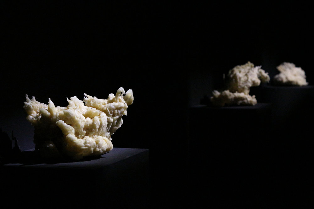 bee's wax sculptures.jpg