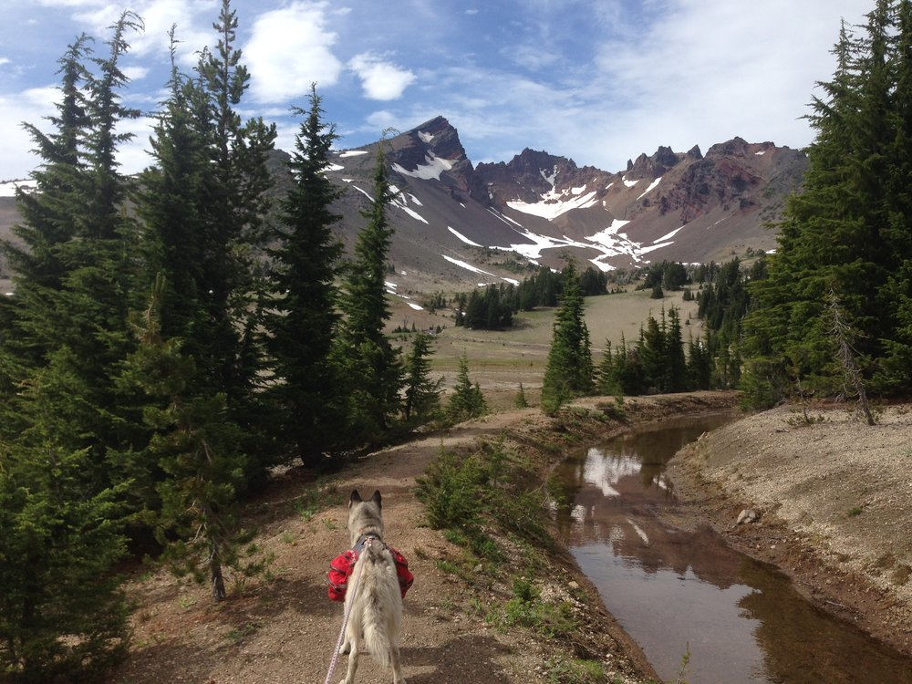Three Sisters Wilderness OR