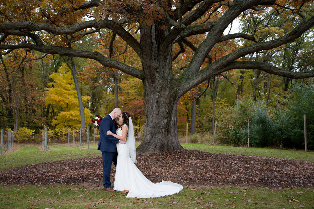 The most perfect oak tree on Black Barn's property served as the backdrop for their couple portraits.