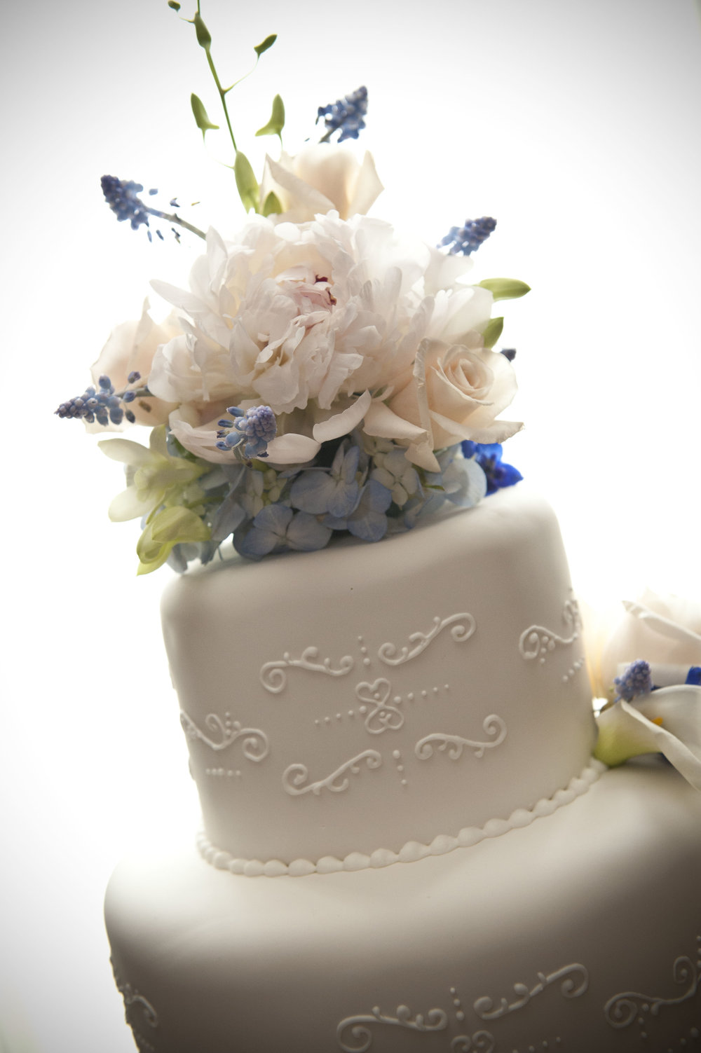 blue and white cake.jpg