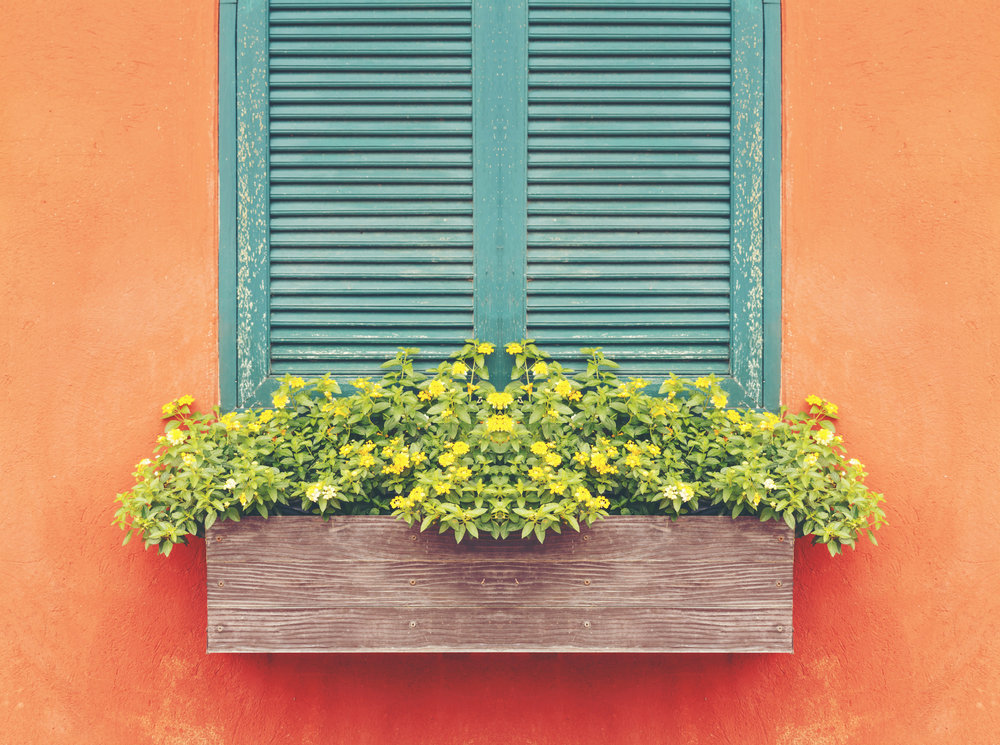 Shutters and flower box