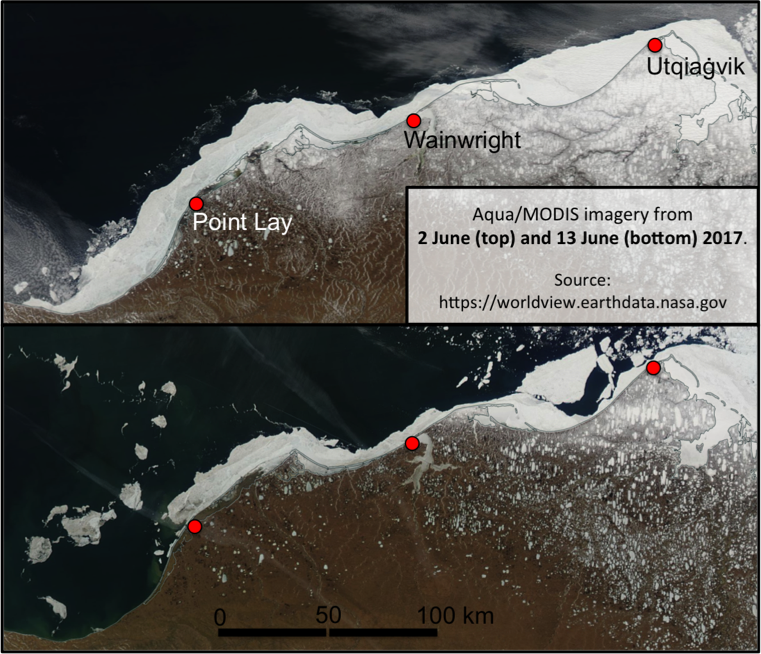Figure 3.  Shorefast ice breakup along the coastal Chukchi Sea between June 2 (top) and 13 (bottom) 2017. The shorefast ice in this region had remained largely intact since mid-March.