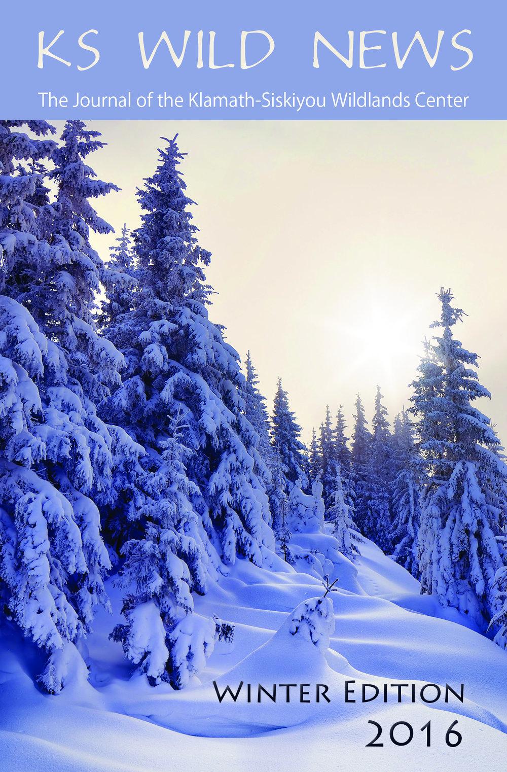 2016-2017 Winter Newsletter