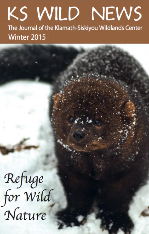 Winter 2014/2015 Newsletter