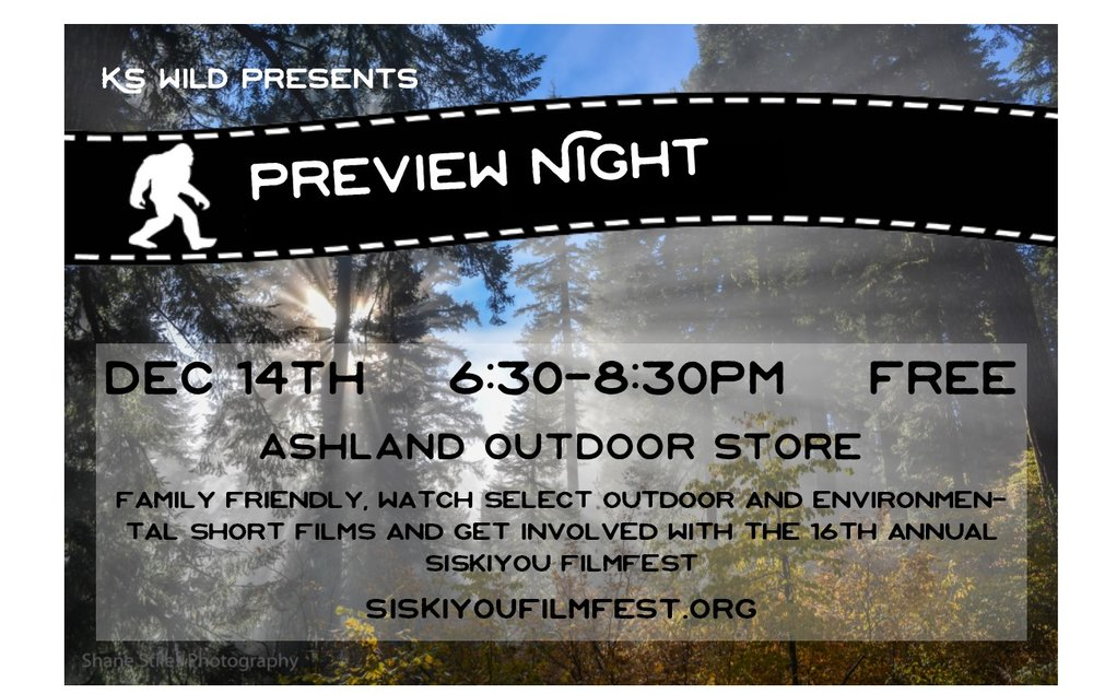 AOS Preview Night Flyer 20171113.jpg