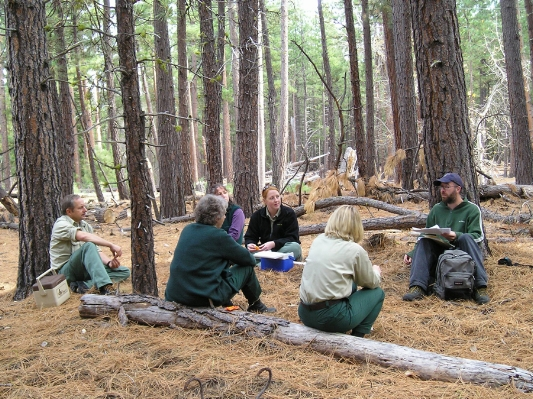 KS Wild works with land managers and communities to enhance forest health.
