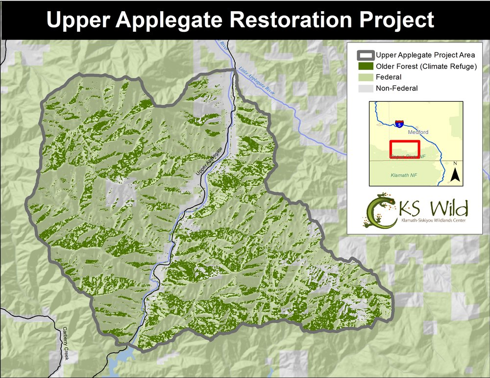 While several thousands of acres of tree plantations, meadows and dry forest have been identified for restoration forestry, the remaining older forests in the watershed will not be the target of these treatments. Instead, thinning will aim to protect these important forests from future high severity fire.