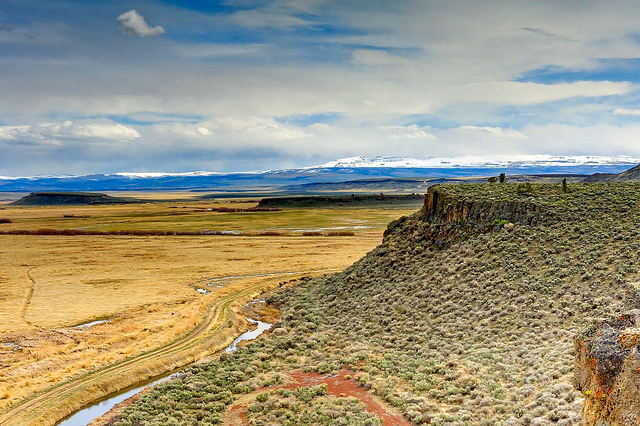 A brief history of our public lands