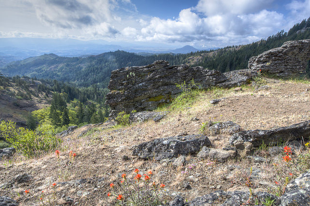 Wrangle Camp stewardship offers hope for the future