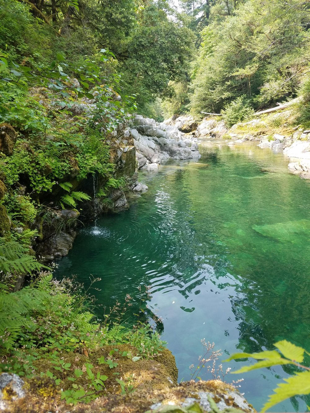 Summer's here and it's time for wild swimming