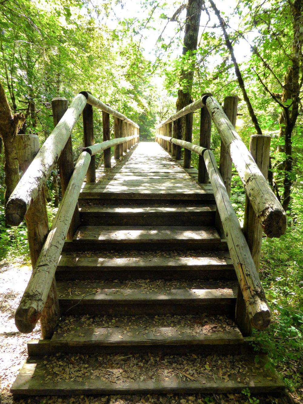 another bridge to cross.jpg