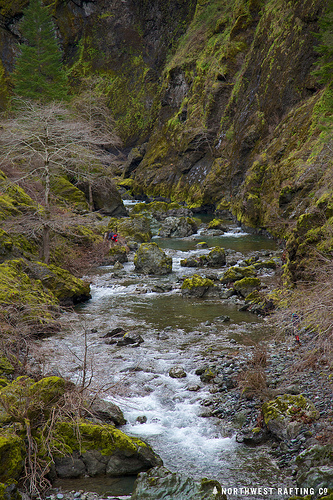 North Fork Silver Creek - Silver Creek (main stem pictured here) s a stream that feeds the Illinois River downstream from Cave Junction, Oregon. This bill would protect a stretch of the North Fork of Silver Creek deep in the Siskiyou Mountains.