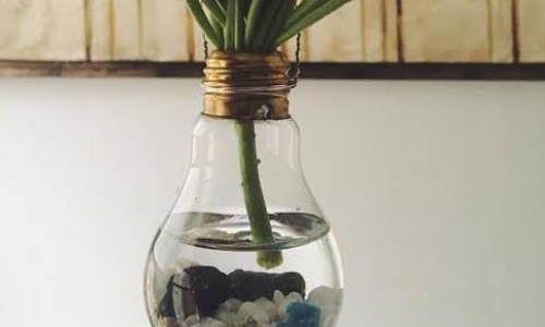 DIY LIGHTBULB TERRARIUM - FEBRUARY 27    6:30PM - 8:30PM