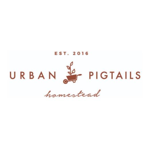 Urban Pigtails