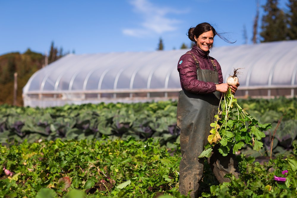 - Emily: OwnerAs the founder and visionary of Twitter Creek Gardens, and a life long Alaskan, I'm determined to provide a food alternative to the grocery store chains Alaskans are prone to. You can almost always find me in the field.