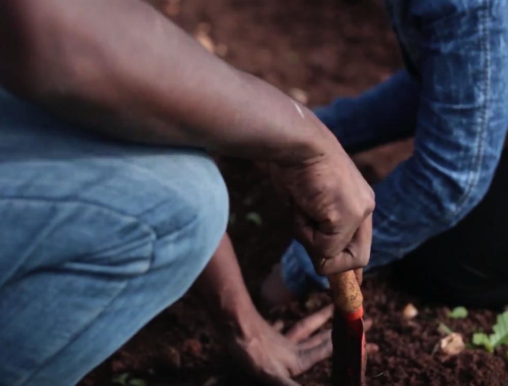 semear na pessoa.png